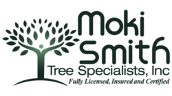 Moki Smith Tree Specialists Logo